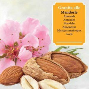 Granita con ingredienti naturali provenienti da materie prime selezionate