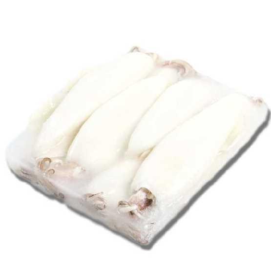 Calamari puliti. Origine: India. Taglia: U5